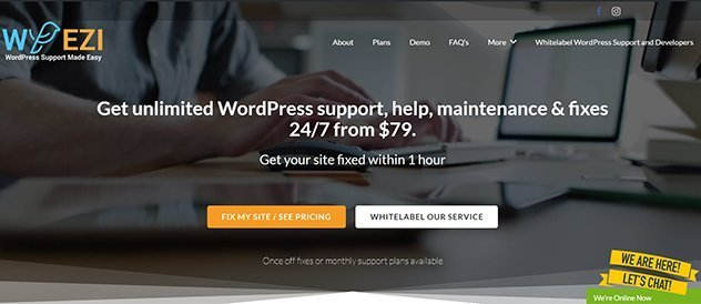 Whitelabel WordPress Developers